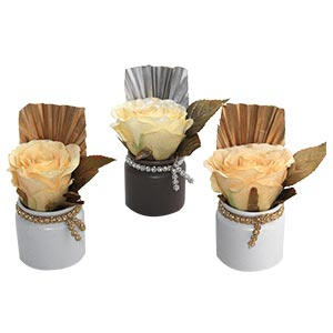 Diwali Gift Set of 3 High Quality Ceramic Pots with Rose Flowers