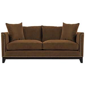 Two Seater Loveseat Sofa With Cozy Cushion