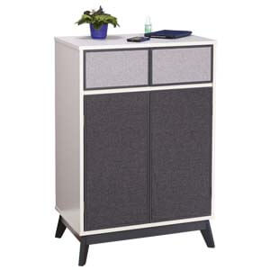 Modern Cabinet with Dual Tone Front Laminate Design