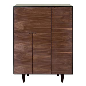 Modern Cabinet with Multiple Storage Options