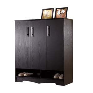 Contemporary Cabinet Style Shoe Rack with 2 Bottom Open Shelves